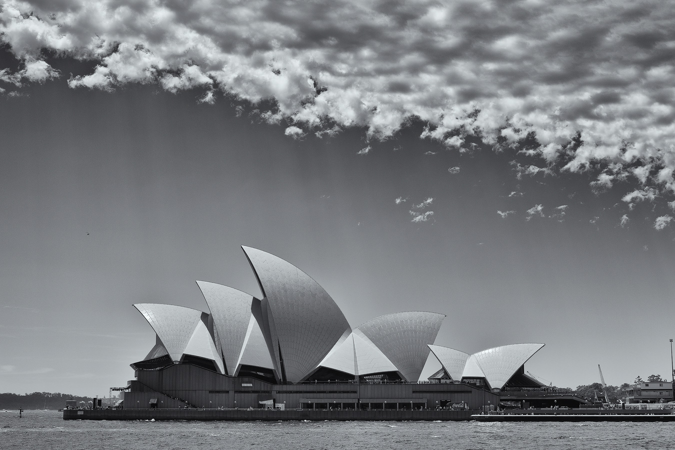 Black And White Photography Monochrome Photography