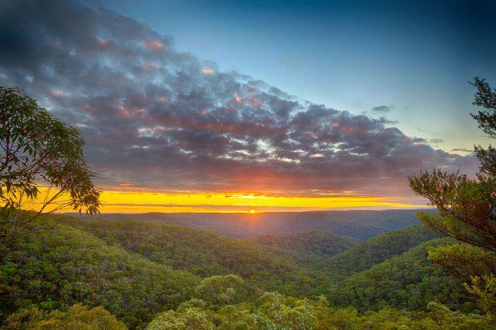 Great North Walk, Berowra, Australian Landscape Photography, Berowra Waters, Berowra Valley National Park