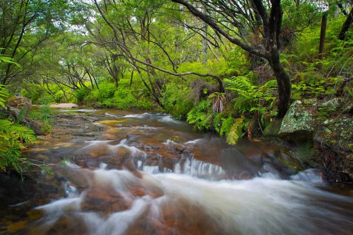 Leura Falls, Waterfalls, Rainforest, Blue Mountains