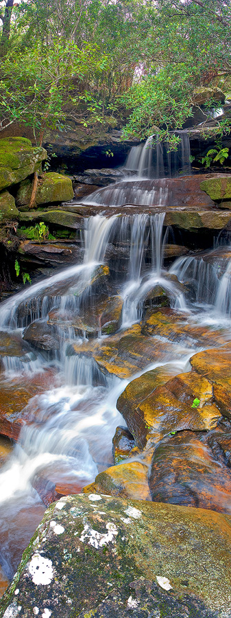 Somersby Tears, Somersby, Somersby Falls, Waterfalls, Central Coast