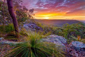 Sunset over Berowra taken in Berowra Valley Regional Park