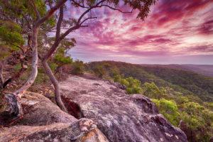 Berowra, Berowra Valley National Park, Berowra Waters, Sunrise, Landscape Photography, Landscape Photography Sydney