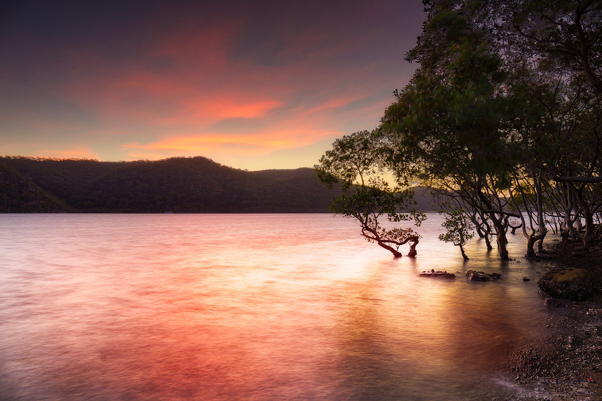 Sunset over the Hawkesbury mangroves at Deerubbin Reserve looking toward Muogamarra Nature Reserve